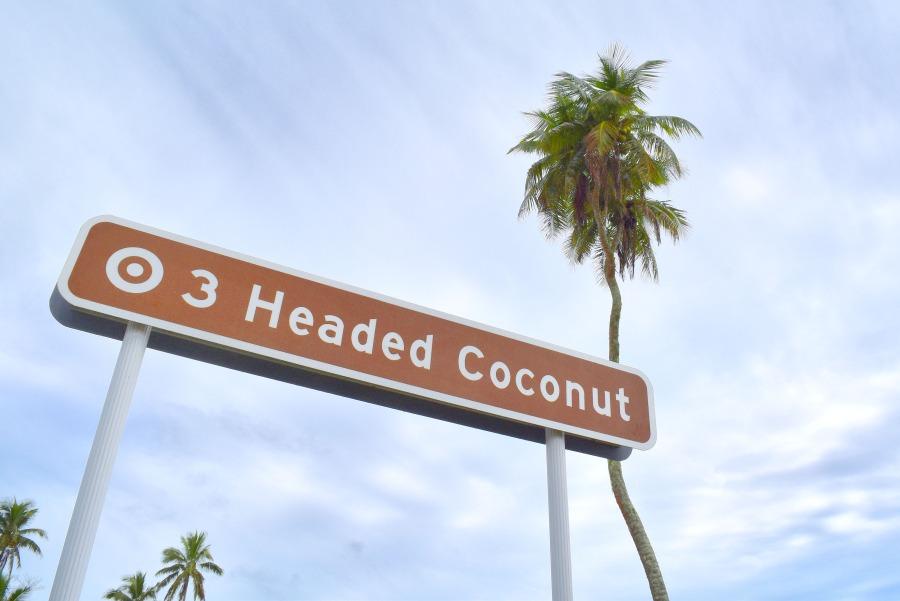 3 Headed Coconut Mandatory Credit To TongaPocketGuide.com Small