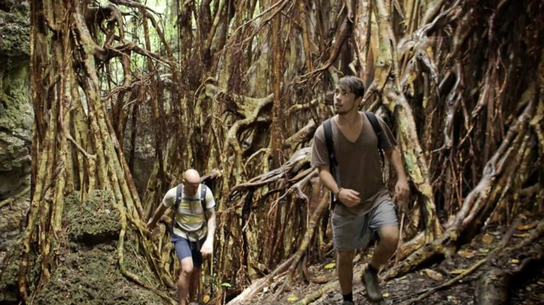 5 Best Hikes in 'Eua
