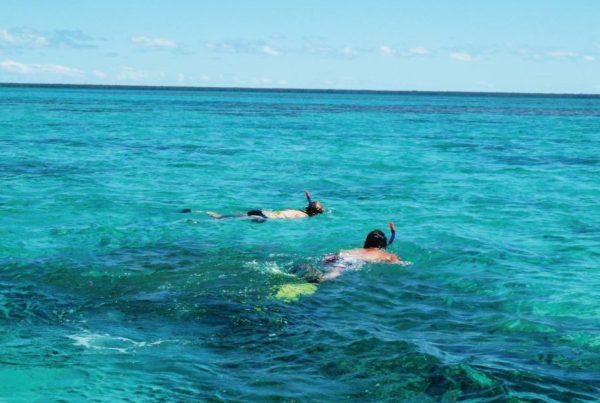The Best Snorkel & Scuba Dive Tours on Tongatapu