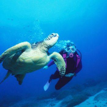 Tonga Luxury Itinerary: 7 Days