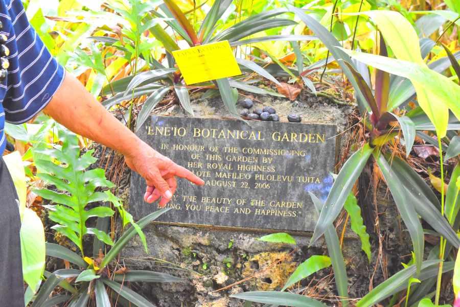 Eneio Botanical Garden Plaque Mandatory Credit To TongaPocketGuide.com Small