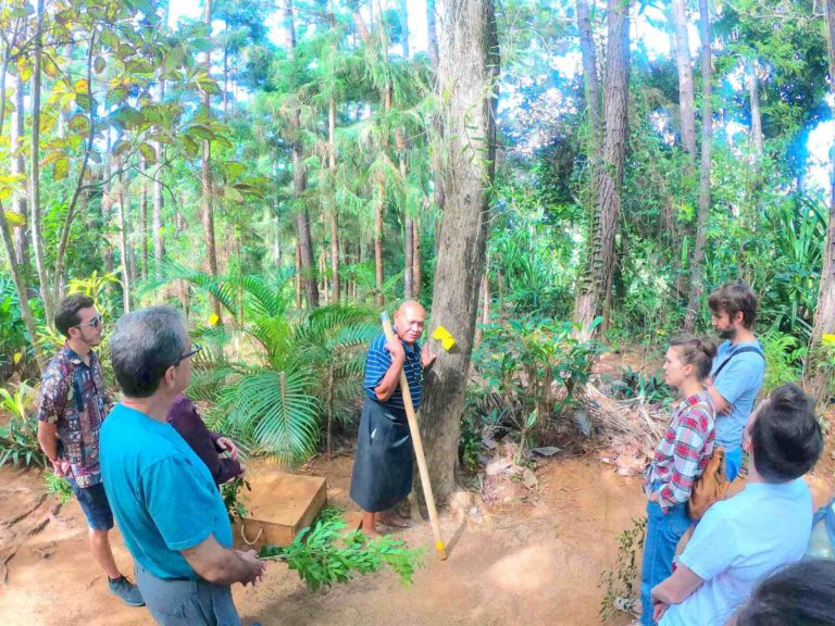 5 Best Guided Tours of Vava'u