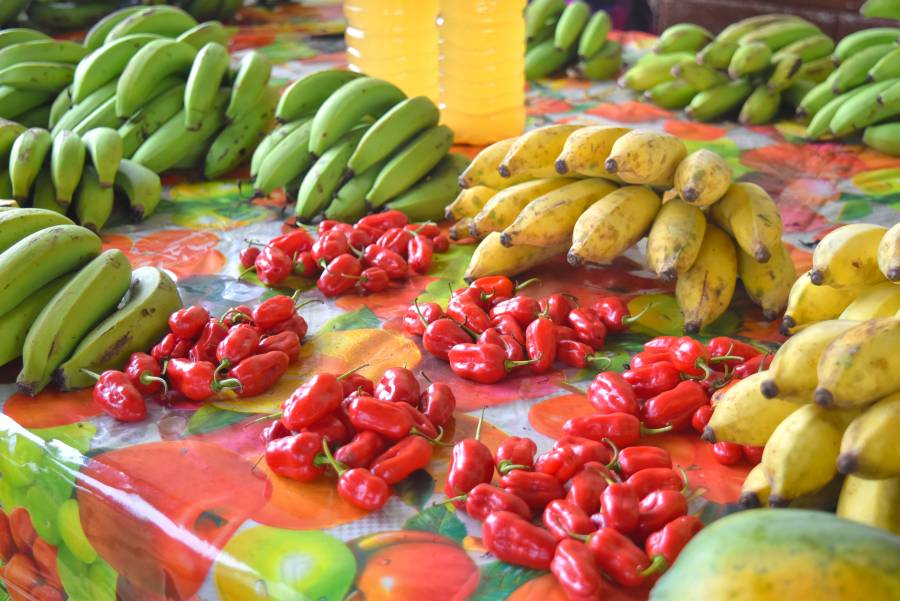 7 Things to Do in Vava'u for Foodies