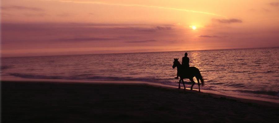 The Wedding & Honeymoon Guide to Ha'apai