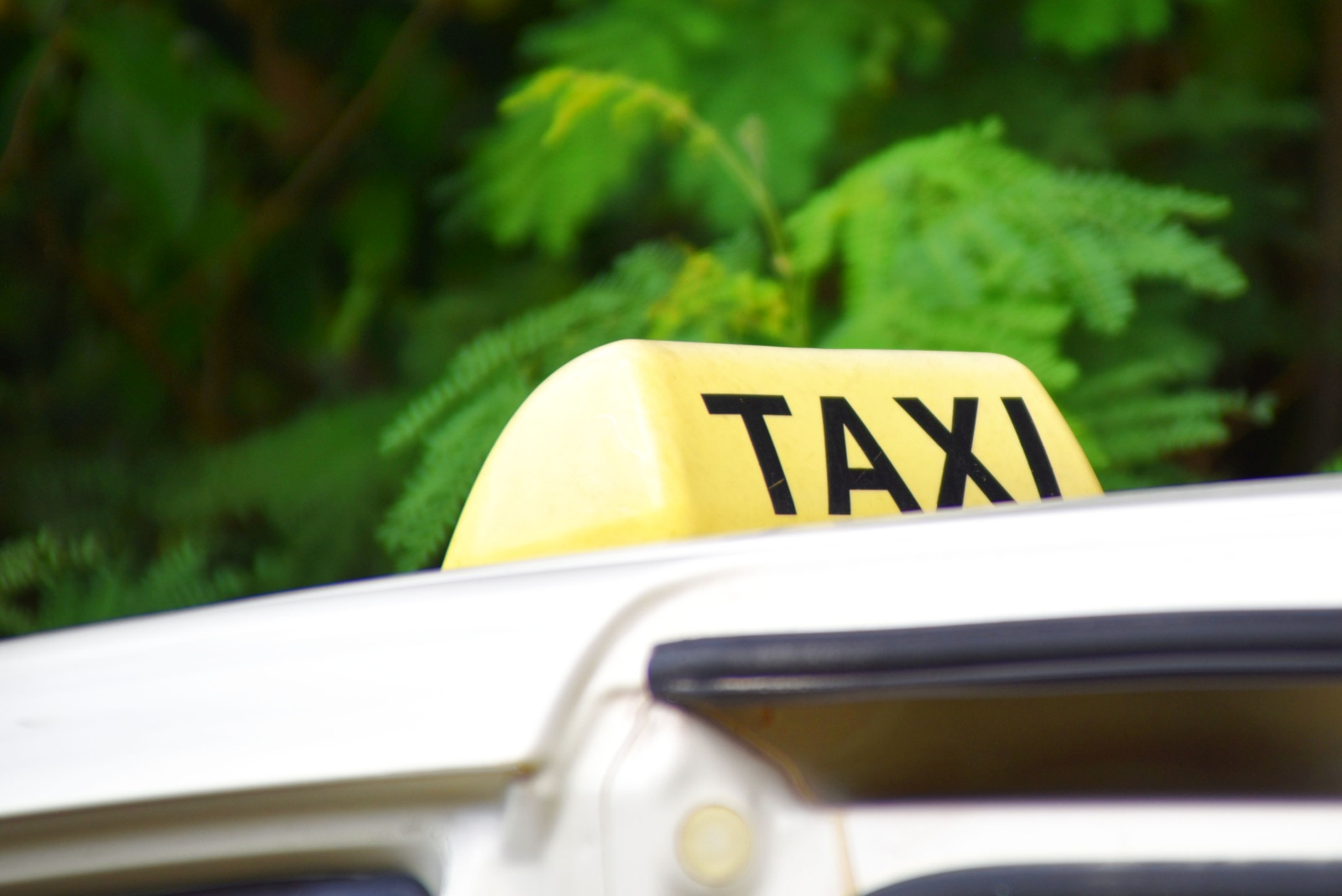 How Much Does a Tonga Airport Taxi Cost?