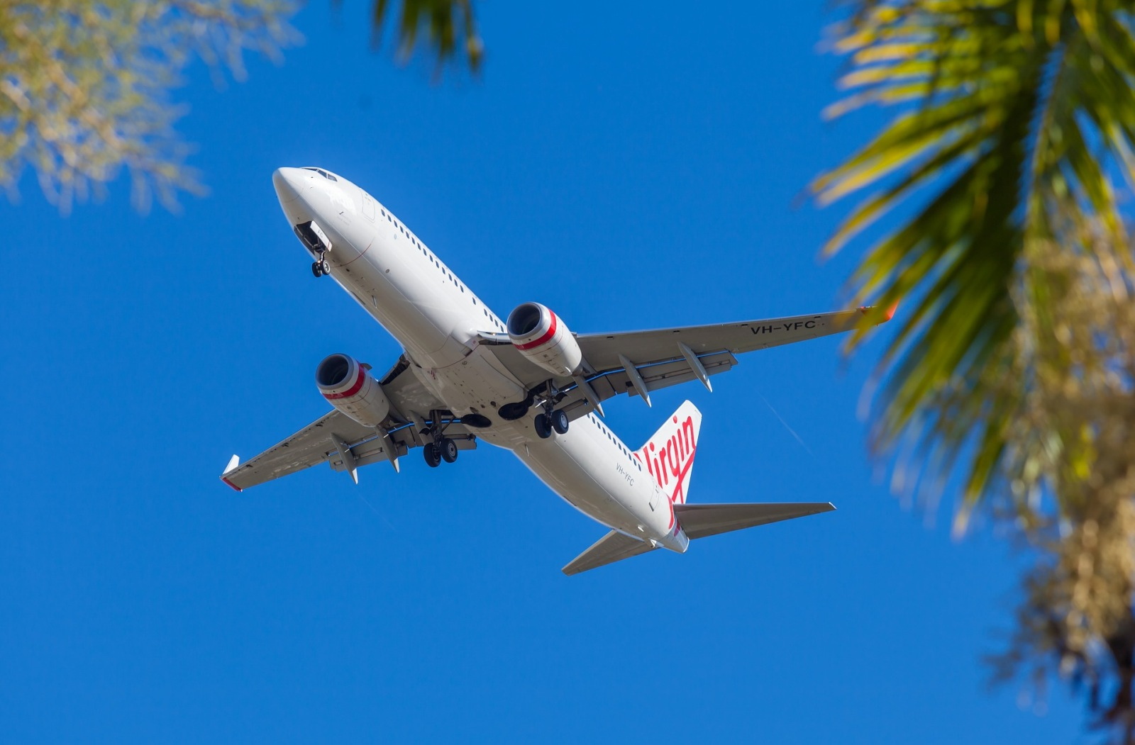 Which Airlines Fly to Tonga?