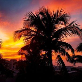 10 Best Honeymoon Accommodation in Vava'u