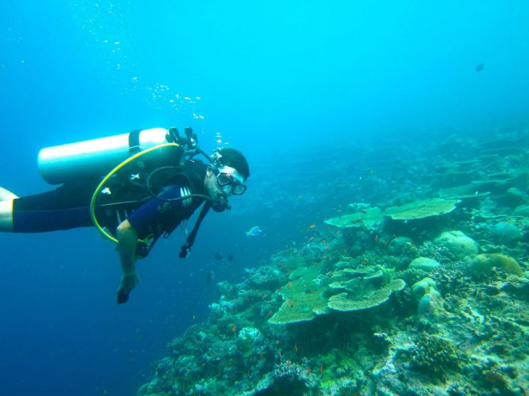 The Best Scuba Diving Tours in 'Eua