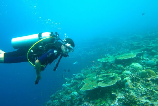 The Best Scuba Diving Tours in 'Eua