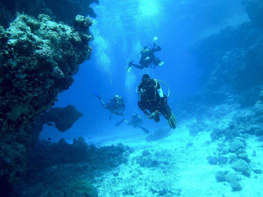 7 Best Scuba Diving Tours in Vava'u