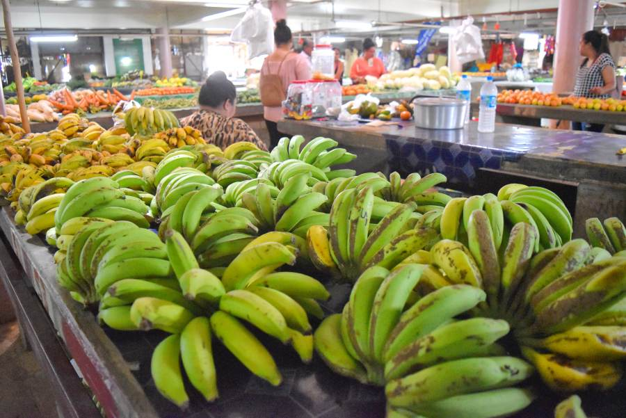 What is the Cost of Food in Tonga?