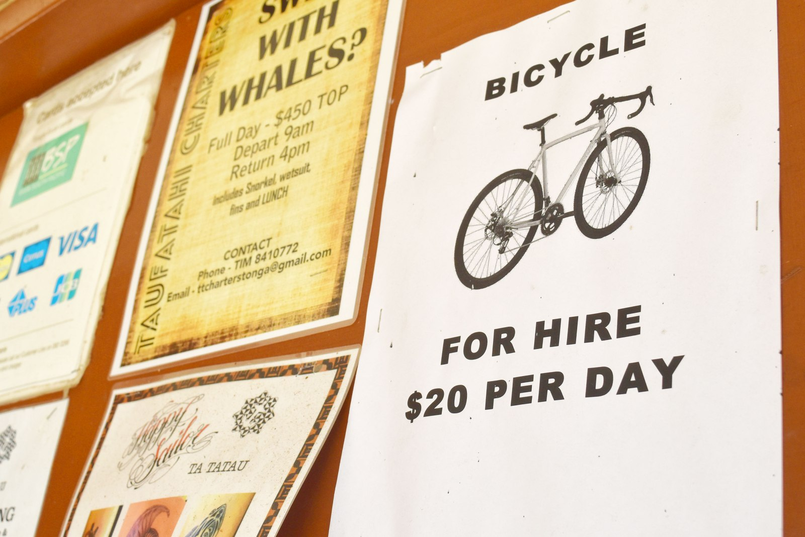 Where to Rent Bicycles in Tonga