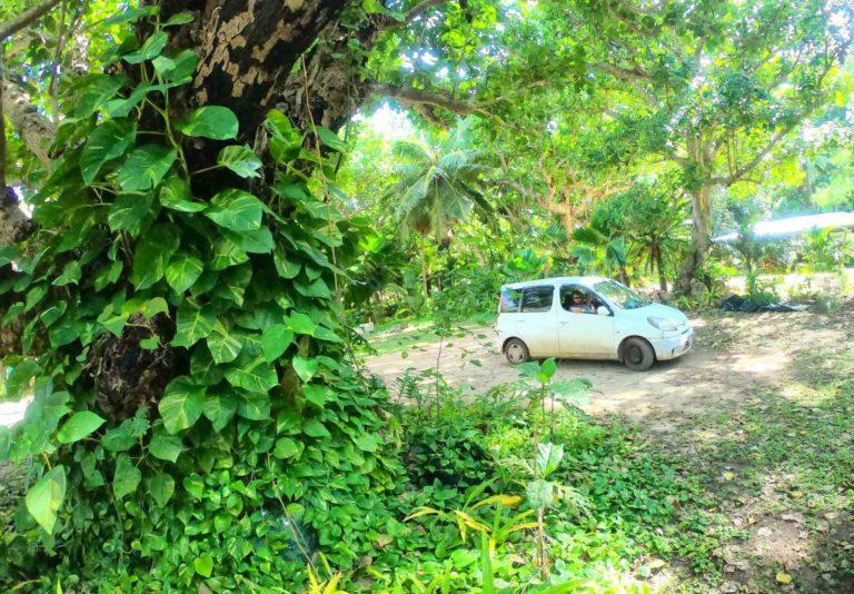 The Best Car Rentals in Vava'u
