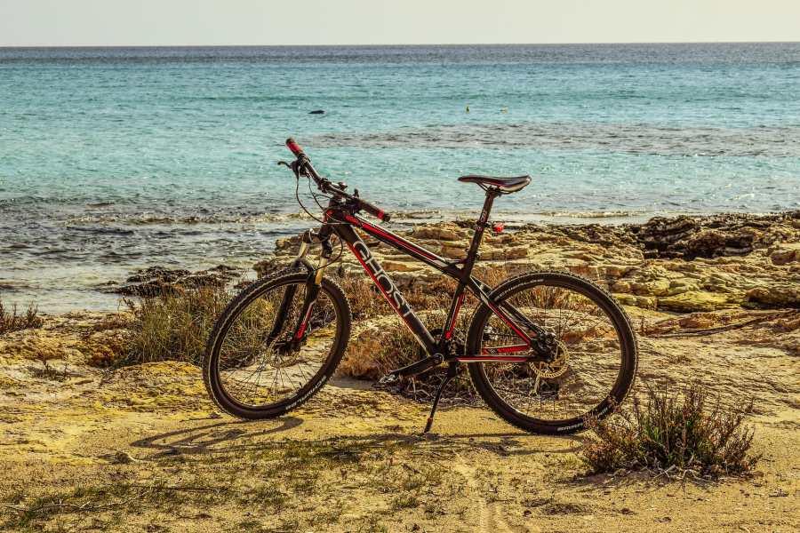 Can You Do Mountain Biking in Tonga?