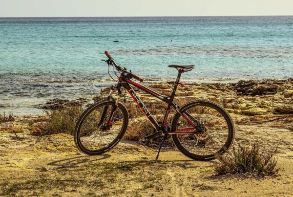 The Best Bike Trails in Tonga