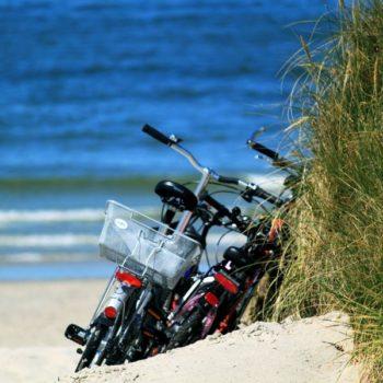 The Bike Tours in Tonga