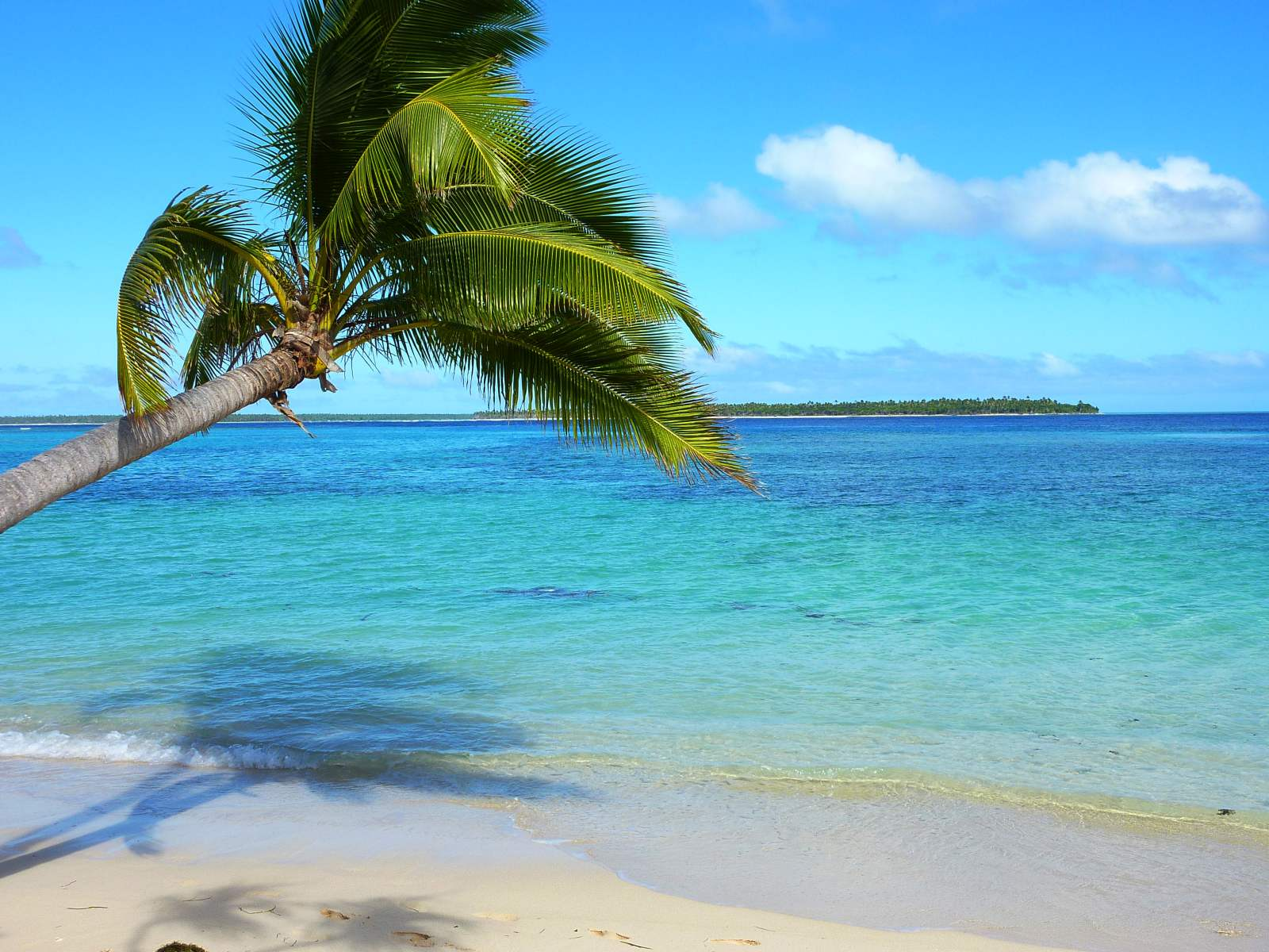 10 Stunning Beaches in Tonga