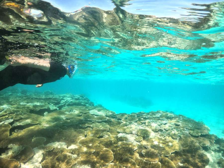 10 Best Places to Snorkel in Tonga