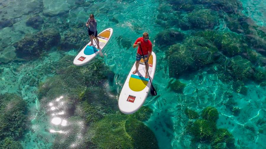 10 Best Water Activities in Tonga