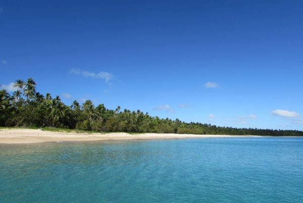 How to Pick the Best Eco-Stay in Tonga for You