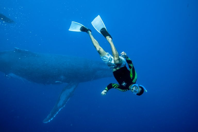 10 Epic Adventure Activities in Tonga