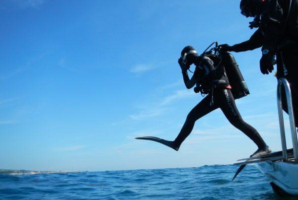 5 Best Dive Resorts in Tonga