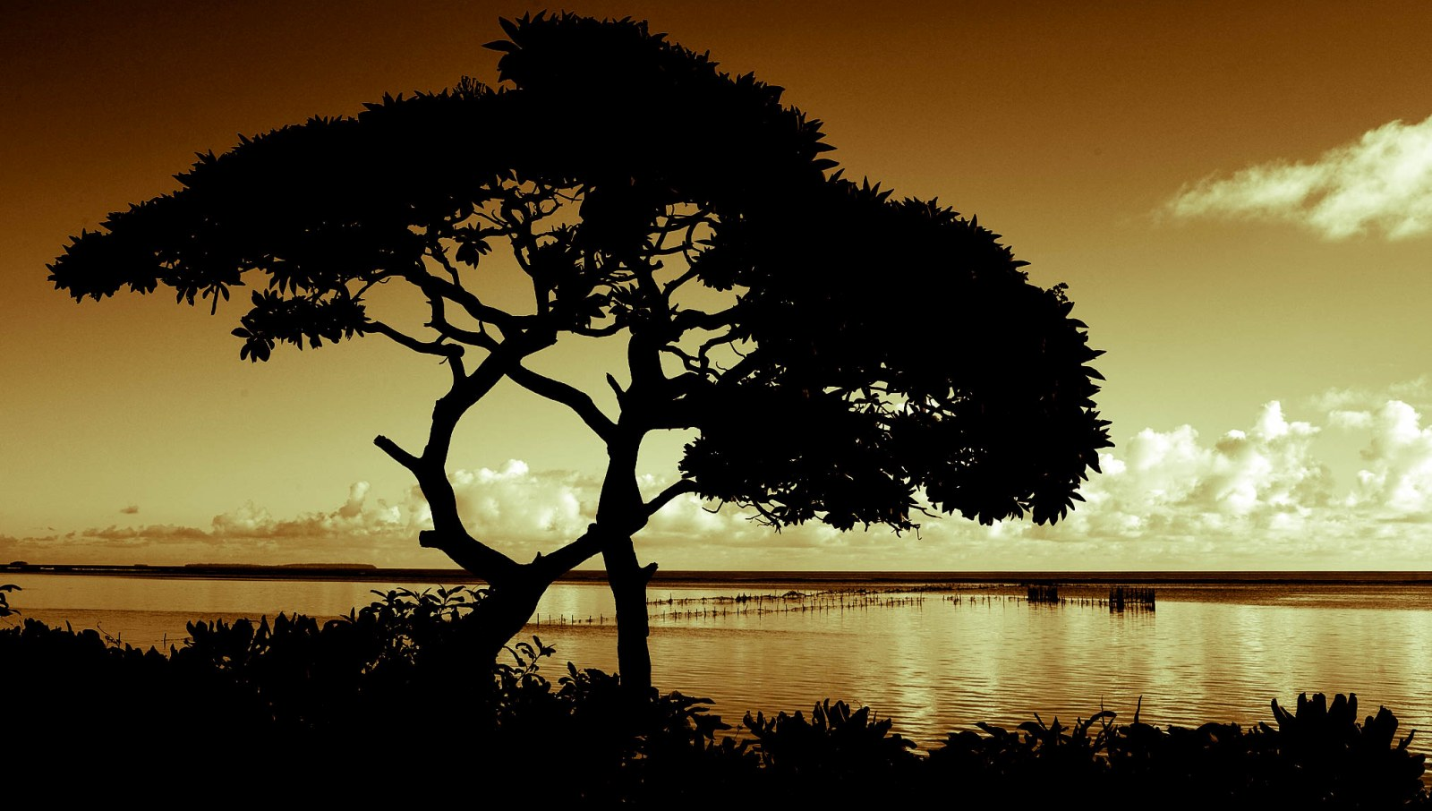 10 Best Eco Resorts in Tonga