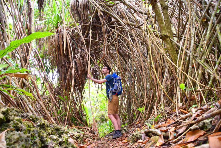 The Adventure Guide to Tonga