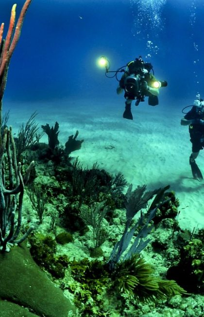 The Best Scuba Diving Tours in Ha'apai